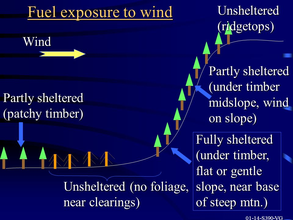Fuel exposure to wind Partly sheltered (patchy timber) Wind Unsheltered (no foliage, near clearings) Fully sheltered (under timber, flat or gentle slo