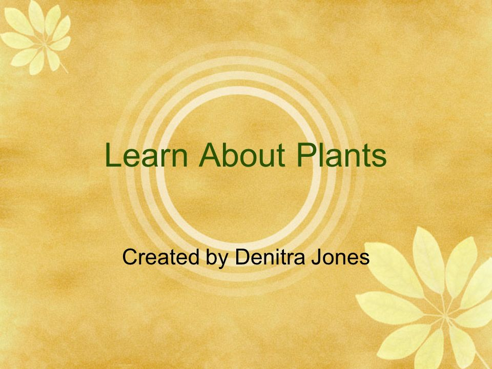 Learn About Plants Created by Denitra Jones