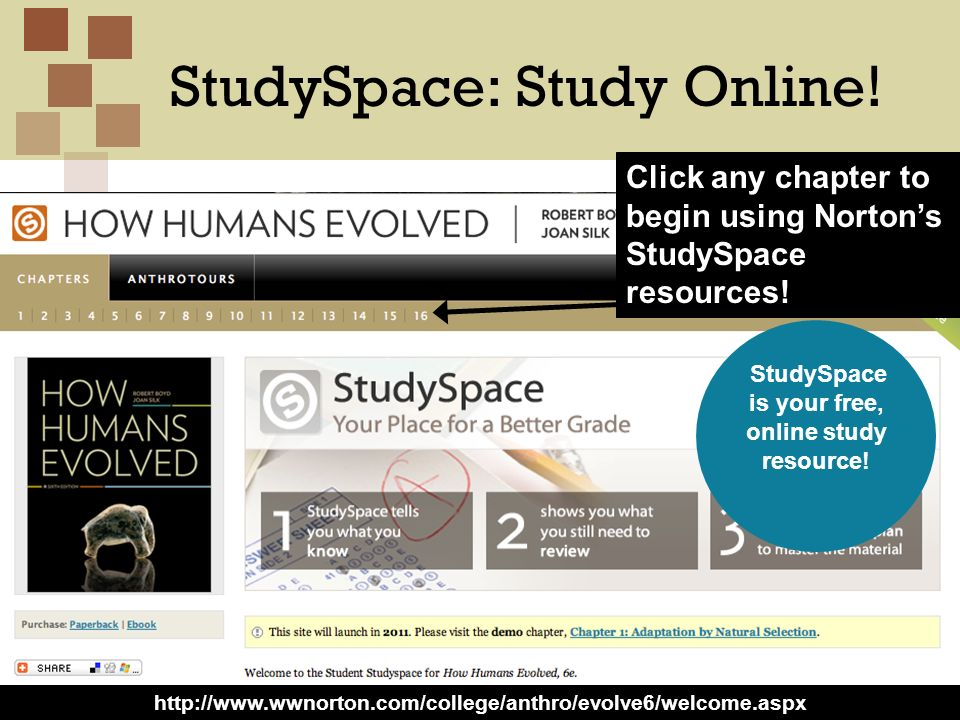 Copyright ©2012 W.W. Norton, Inc. StudySpace: Study Online! 3 Click any chapter to begin using Nortons StudySpace resources! StudySpace is your free,