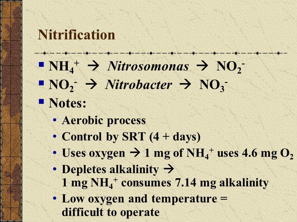 Nitrification NH 4 + Nitrosomonas NO 2 - NO 2 - Nitrobacter NO 3 - Notes: Aerobic process Control by SRT (4 + days) Uses oxygen 1 mg of NH 4 + uses 4.