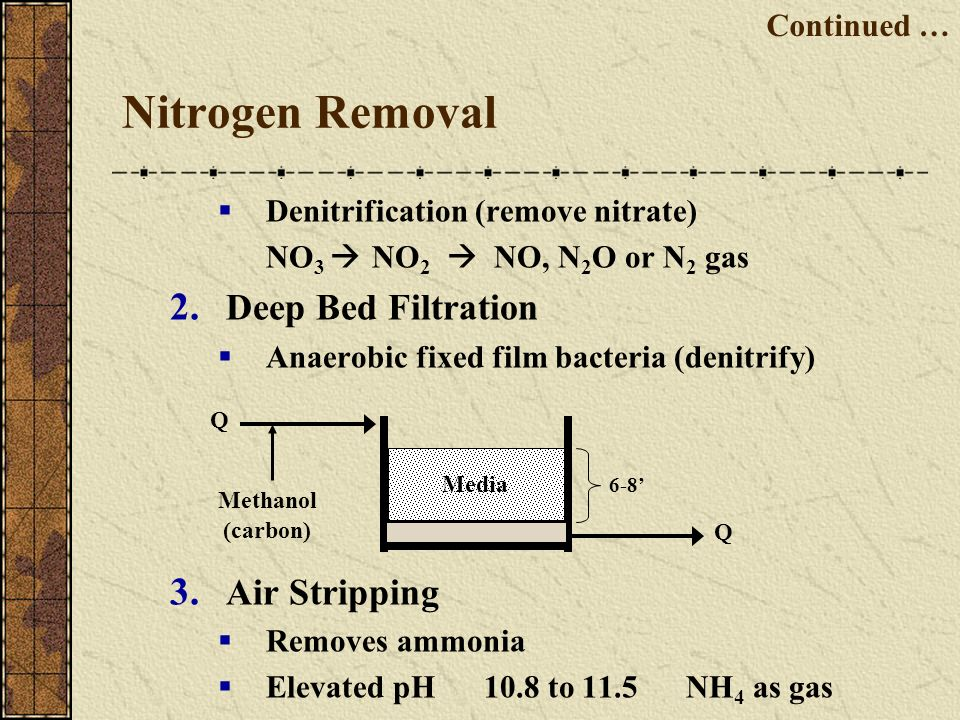 Nitrogen Removal Denitrification (remove nitrate) NO 3 NO 2 NO, N 2 O or N 2 gas 2. Deep Bed Filtration Anaerobic fixed film bacteria (denitrify) 3. A