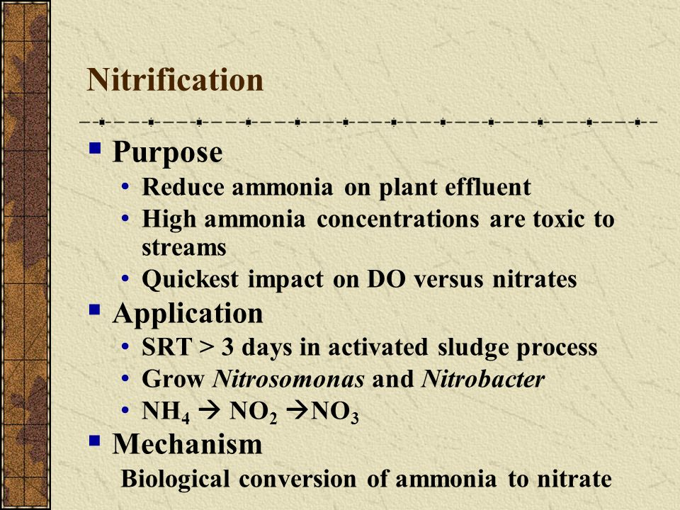 Nitrification Purpose Reduce ammonia on plant effluent High ammonia concentrations are toxic to streams Quickest impact on DO versus nitrates Applicat