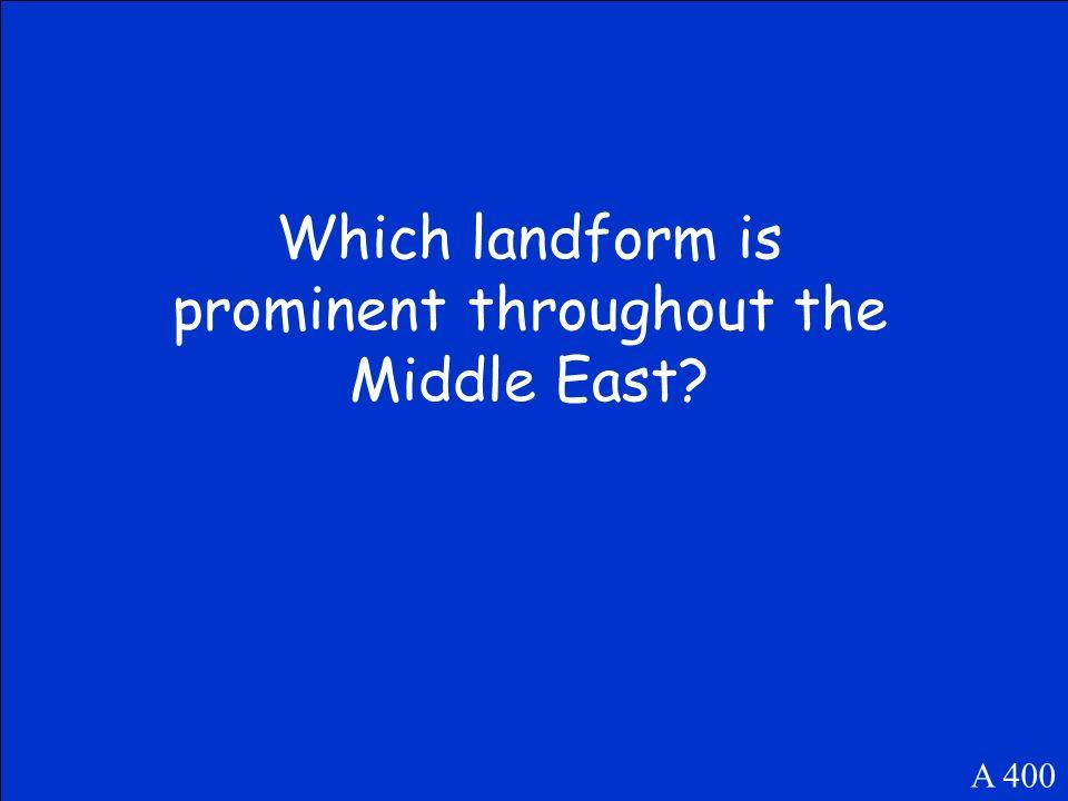 Bedouins A 300