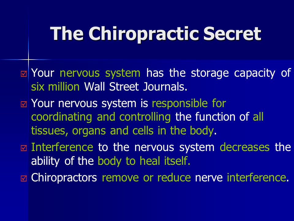The Chiropractic Secret Your nervous system has the storage capacity of six million Wall Street Journals.