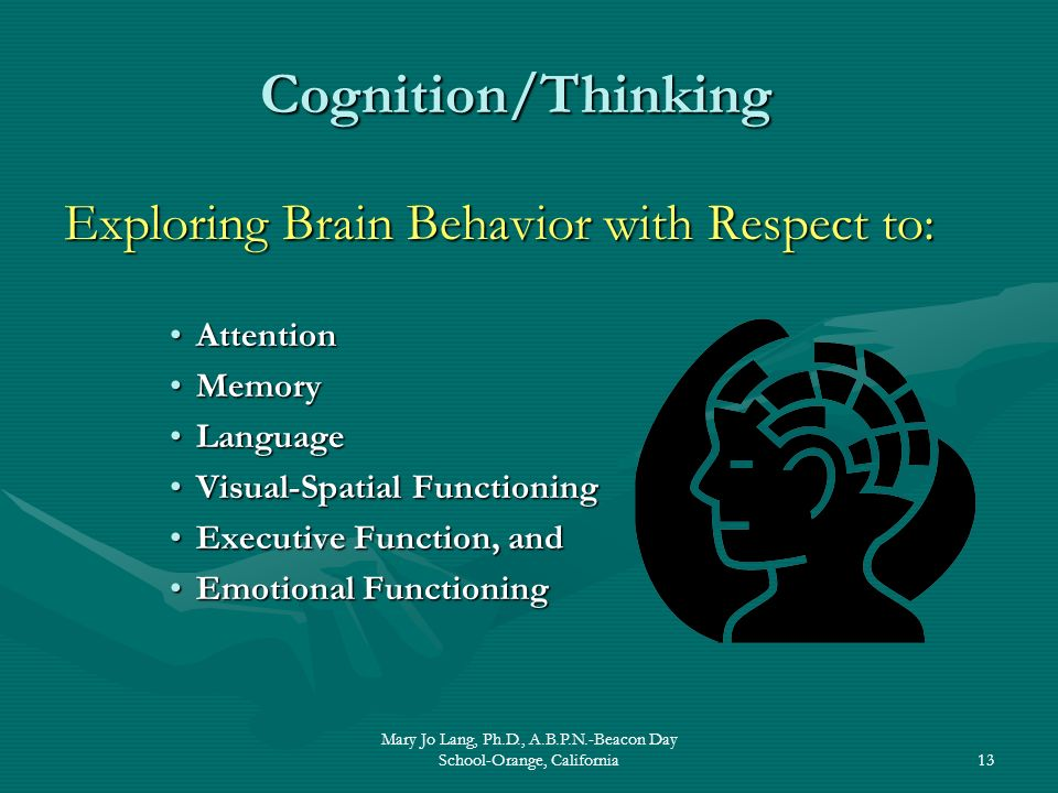 Mary Jo Lang, Ph.D., A.B.P.N.-Beacon Day School-Orange, California13 Exploring Brain Behavior with Respect to: AttentionAttention MemoryMemory Languag
