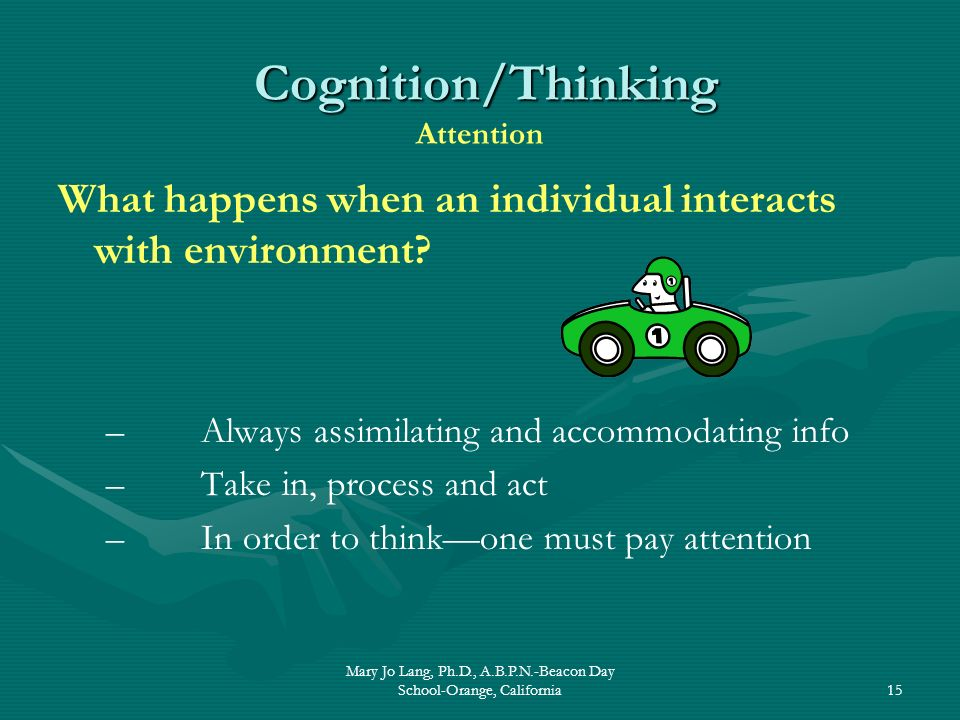Mary Jo Lang, Ph.D., A.B.P.N.-Beacon Day School-Orange, California15 Cognition/Thinking Cognition/Thinking Attention What happens when an individual i