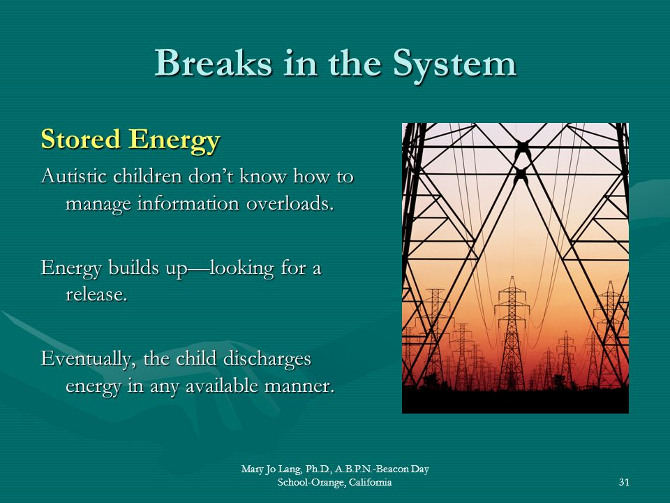 Mary Jo Lang, Ph.D., A.B.P.N.-Beacon Day School-Orange, California31 Breaks in the System Stored Energy Autistic children dont know how to manage info