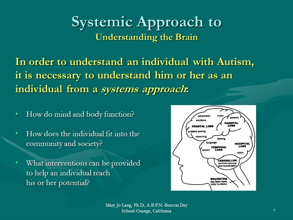 Mary Jo Lang, Ph.D., A.B.P.N.-Beacon Day School-Orange, California7 Systemic Approach to Understanding the Brain In order to understand an individual