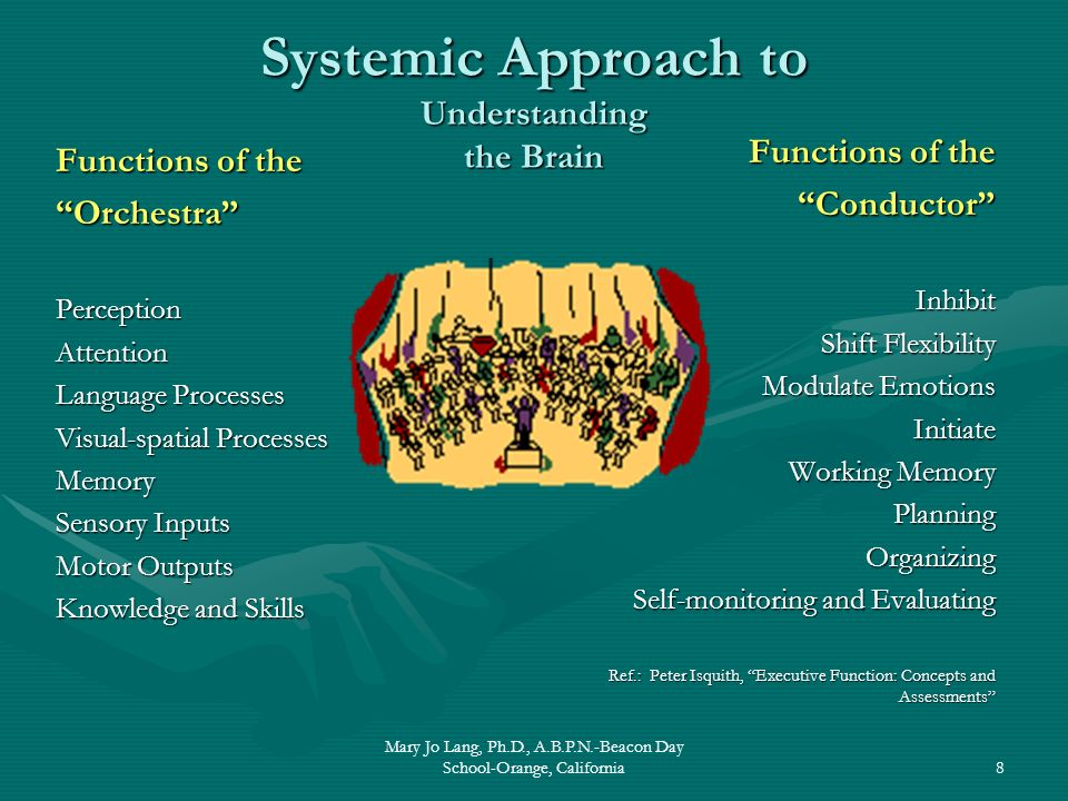 Mary Jo Lang, Ph.D., A.B.P.N.-Beacon Day School-Orange, California8 Systemic Approach to Understanding the Brain Functions of the OrchestraPerceptionA