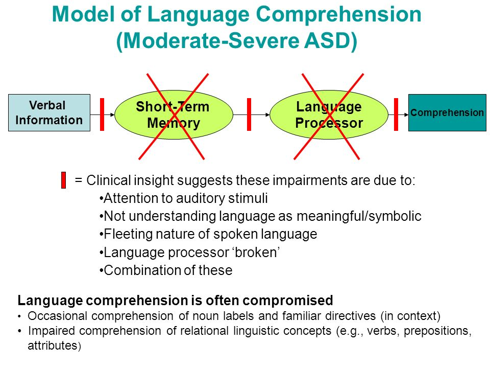 Model of Language Comprehension (Moderate-Severe ASD) Verbal Information Short-Term Memory Language Processor Comprehension = Clinical insight suggest