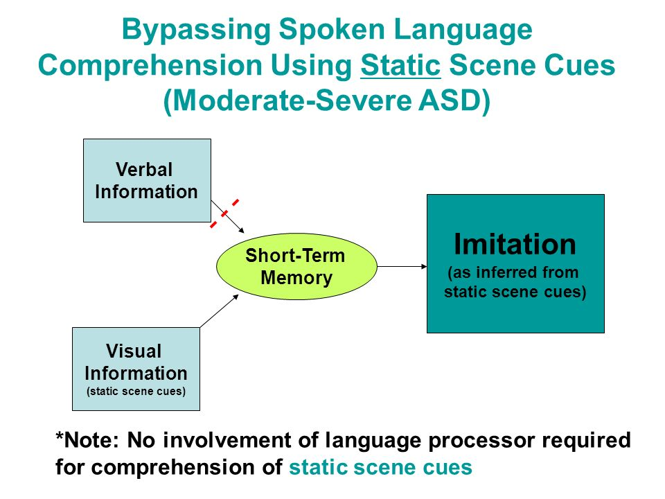 Bypassing Spoken Language Comprehension Using Static Scene Cues (Moderate-Severe ASD) *Note: No involvement of language processor required for compreh
