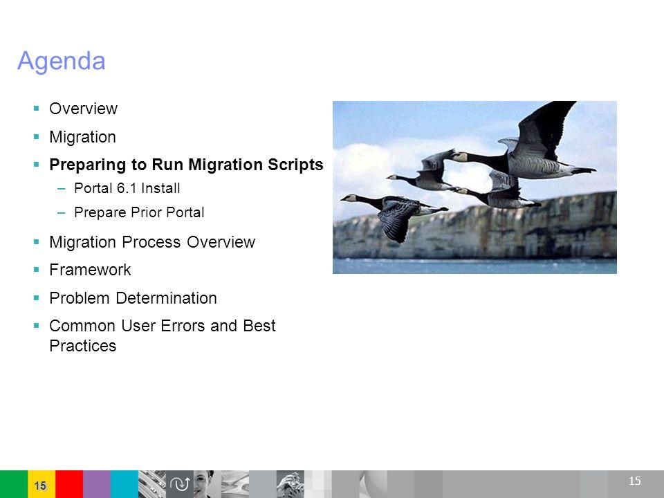 15 Agenda Overview Migration Preparing to Run Migration Scripts –Portal 6.1 Install –Prepare Prior Portal Migration Process Overview Framework Problem