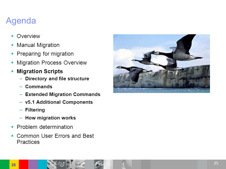 25 Agenda Overview Manual Migration Preparing for migration Migration Process Overview Migration Scripts –Directory and file structure –Commands –Exte