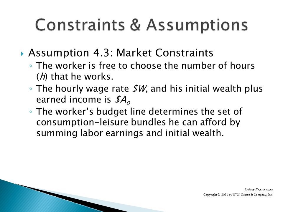 Assumption 4.3: Market Constraints The worker is free to choose the number of hours (h) that he works.