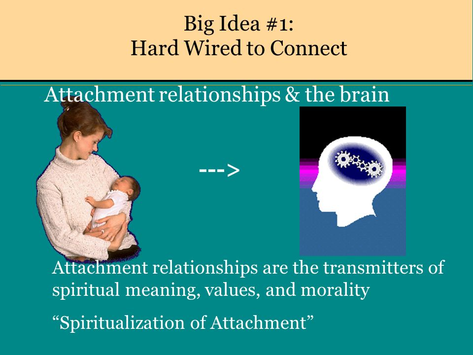 Big Idea #1: Hard Wired to Connect Attachment relationships & the brain ---> Attachment relationships are the transmitters of spiritual meaning, values, and morality Spiritualization of Attachment