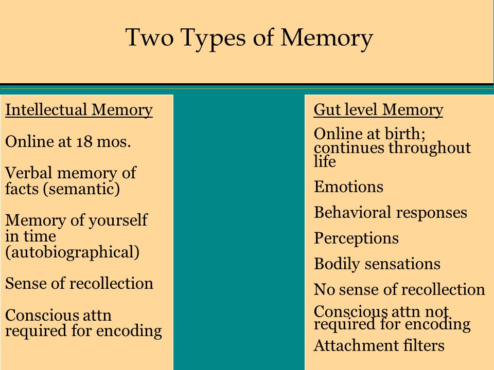 Two Types of Memory Intellectual Memory Online at 18 mos.