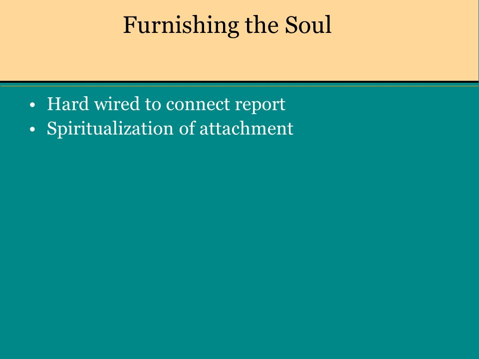 Furnishing the Soul Hard wired to connect report Spiritualization of attachment