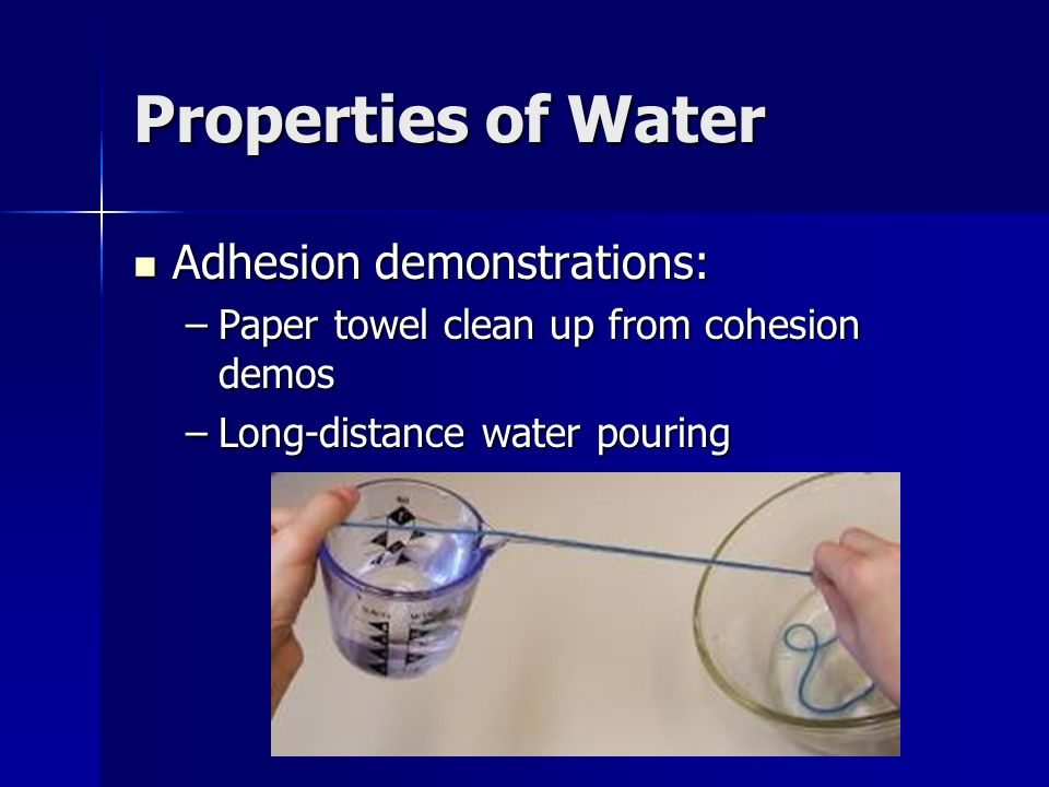 Properties of Water Adhesion demonstrations: Adhesion demonstrations: –Paper towel clean up from cohesion demos –Long-distance water pouring
