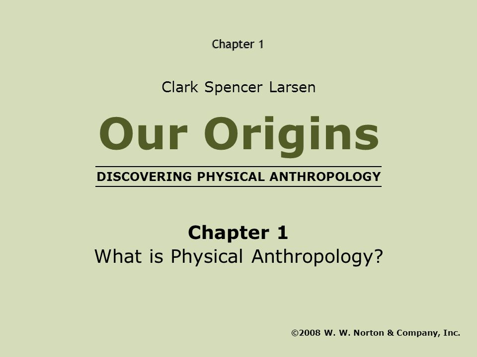 Chapter 1 What is Physical Anthropology? ©2008 W. W. Norton & Company, Inc. Clark Spencer Larsen Our Origins DISCOVERING PHYSICAL ANTHROPOLOGY Chapter