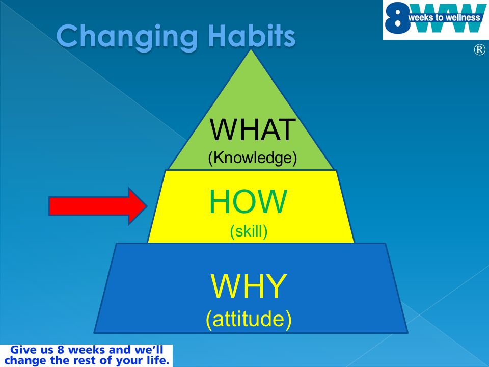 ® WHY (attitude) HOW (skill) WHAT (Knowledge)