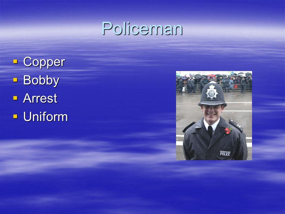 Policeman Copper Copper Bobby Bobby Arrest Arrest Uniform Uniform