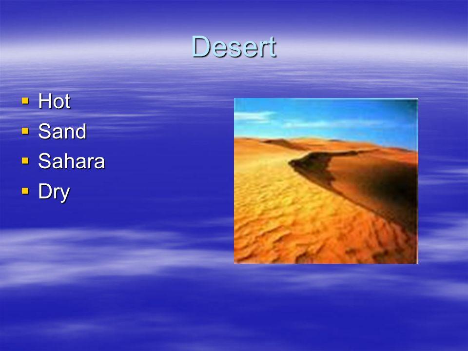 Desert Hot Hot Sand Sand Sahara Sahara Dry Dry