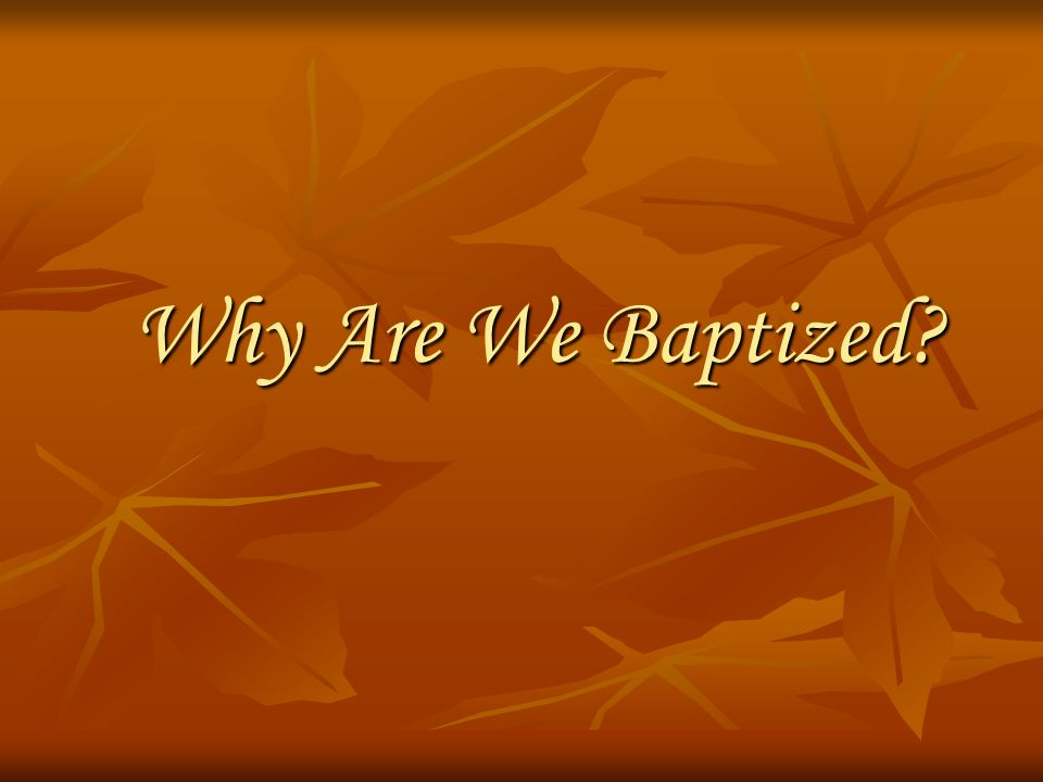 Why Are We Baptized?