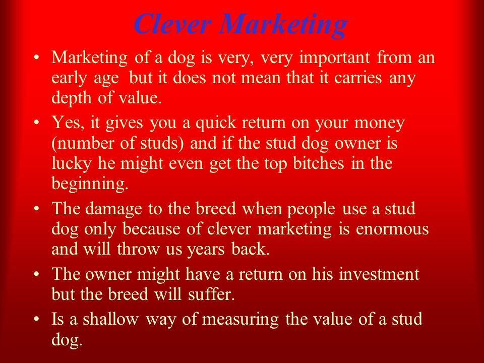 Clever Marketing Marketing of a dog is very, very important from an early age but it does not mean that it carries any depth of value. Yes, it gives y