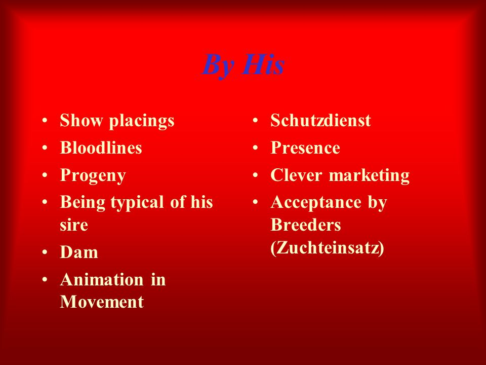 By His Show placings Bloodlines Progeny Being typical of his sire Dam Animation in Movement Schutzdienst Presence Clever marketing Acceptance by Breed