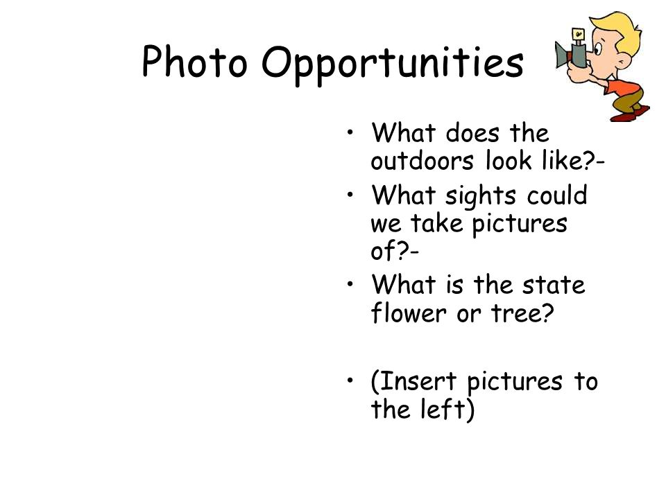 Photo Opportunities What does the outdoors look like?- What sights could we take pictures of?- What is the state flower or tree? (Insert pictures to t
