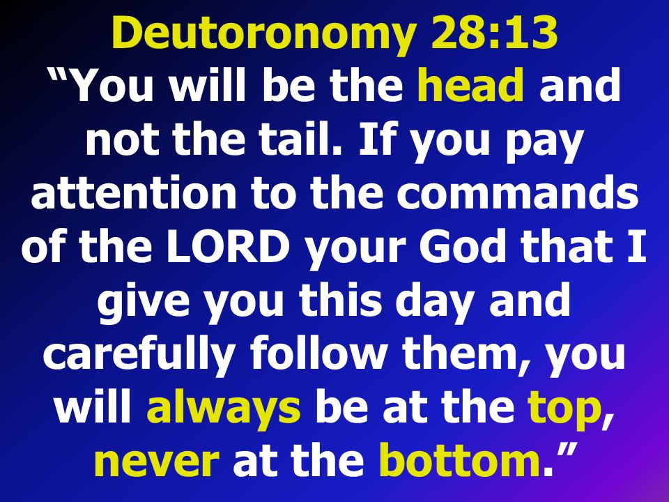 Deutoronomy 28:13 You will be the head and not the tail. If you pay attention to the commands of the LORD your God that I give you this day and carefu
