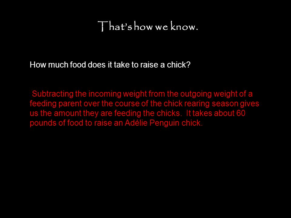 Thats how we know.How much food does it take to raise a chick.