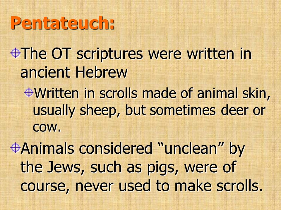 Pentateuch: The OT scriptures were written in ancient Hebrew Written in scrolls made of animal skin, usually sheep, but sometimes deer or cow. Animals