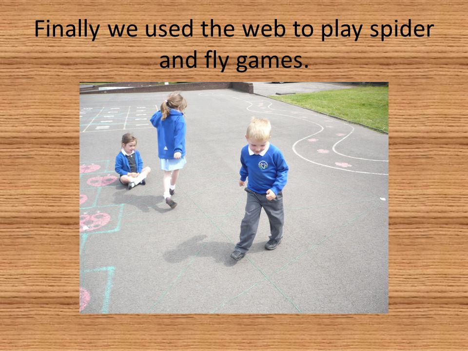 Finally we used the web to play spider and fly games.