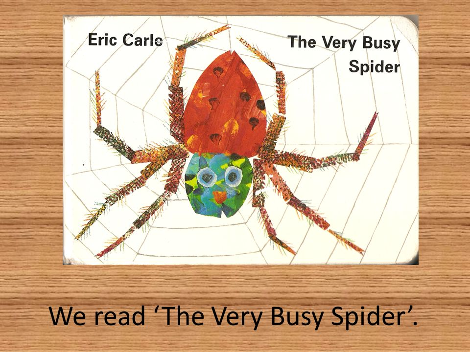 We read The Very Busy Spider.