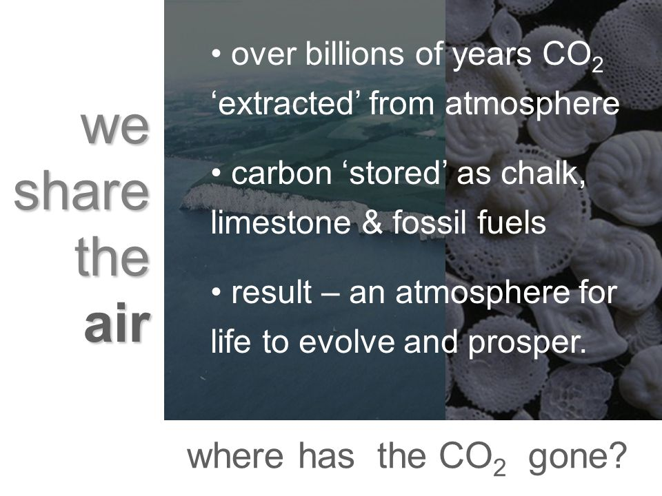 we share the air over billions of years CO 2 extracted from atmosphere carbon stored as chalk, limestone & fossil fuels result – an atmosphere for lif
