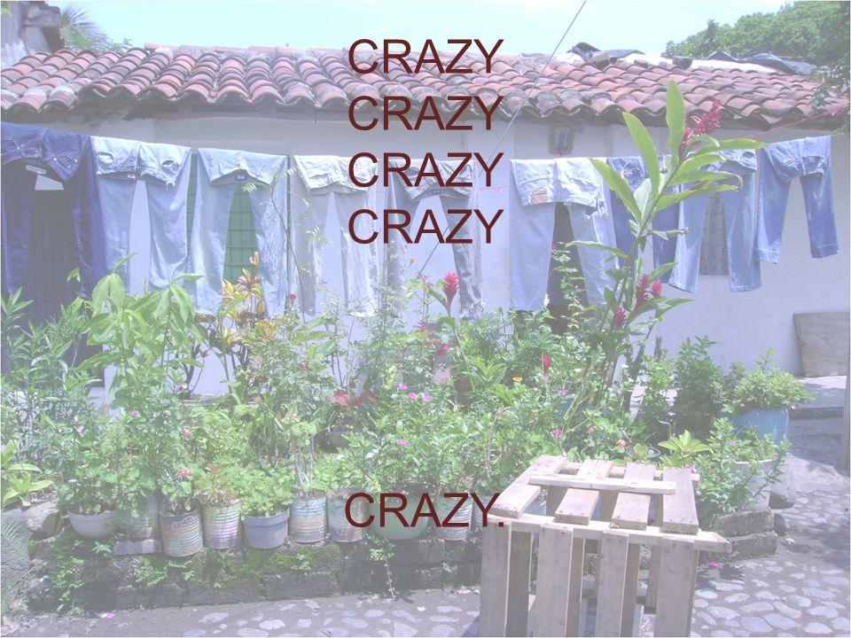 CRAZY CRAZY CRAZY CRAZY CRAZY.
