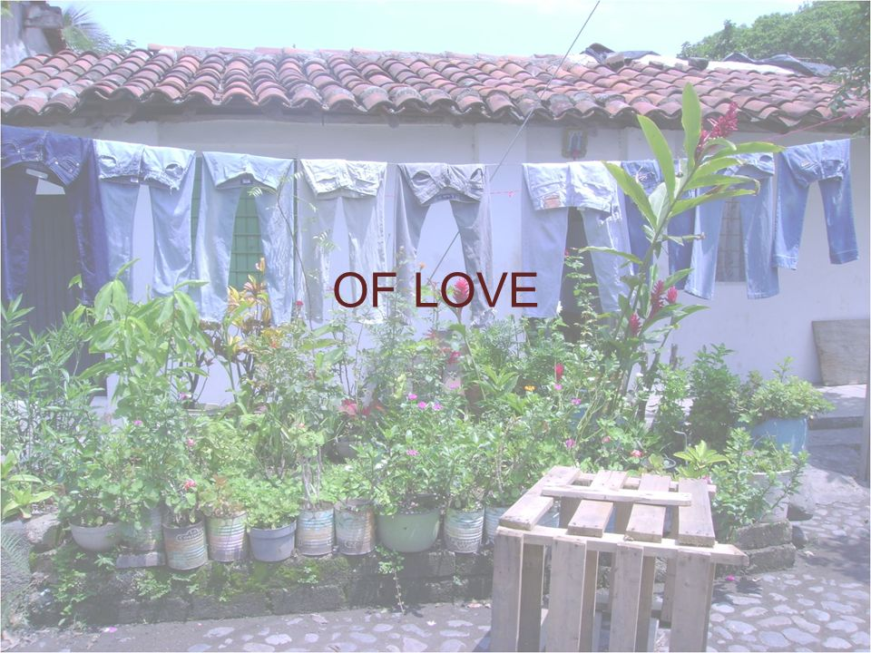 OF LOVE