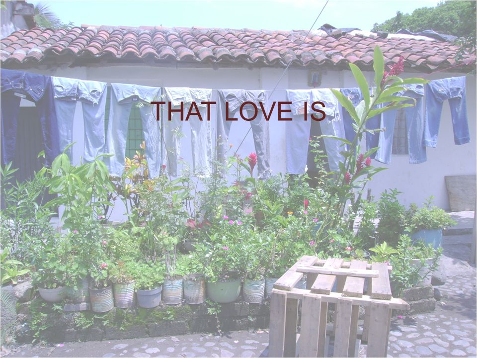 THAT LOVE IS