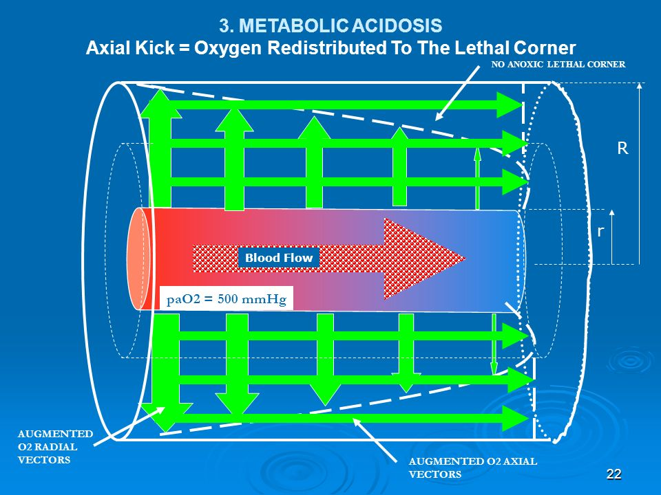 22 AUGMENTED O2 RADIAL VECTORS NO ANOXIC LETHAL CORNER paO2 = 500 mmHg r R Blood Flow 3. METABOLIC ACIDOSIS Axial Kick = Oxygen Redistributed To The L
