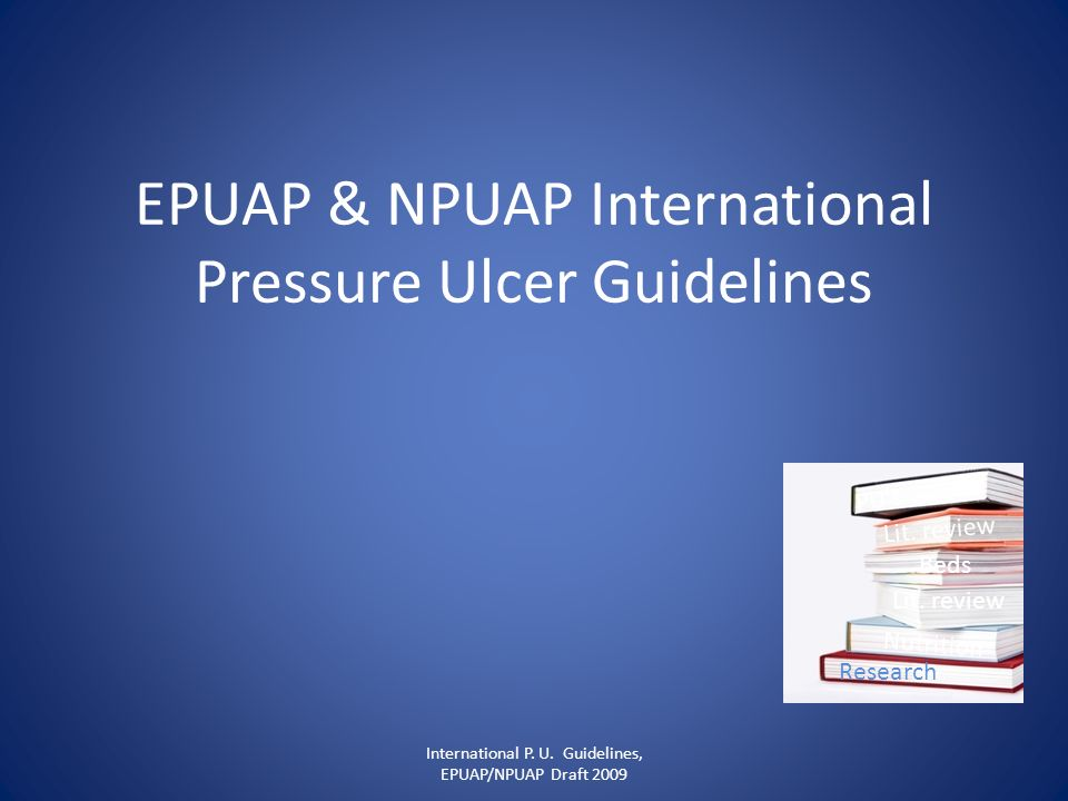 EPUAP & NPUAP International Pressure Ulcer Guidelines International P. U. Guidelines, EPUAP/NPUAP Draft 2009 PUs Beds Research Nutrition Lit. review
