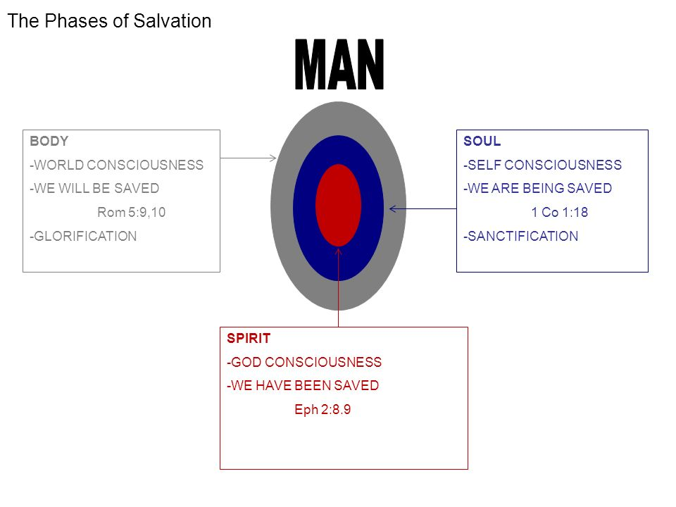 The Phases of Salvation BODY -WORLD CONSCIOUSNESS -WE WILL BE SAVED Rom 5:9,10 -GLORIFICATION SOUL -SELF CONSCIOUSNESS -WE ARE BEING SAVED 1 Co 1:18 -SANCTIFICATION SPIRIT -GOD CONSCIOUSNESS -WE HAVE BEEN SAVED Eph 2:8.9