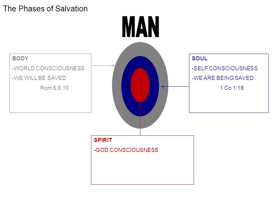 The Phases of Salvation BODY -WORLD CONSCIOUSNESS -WE WILL BE SAVED Rom 5:9,10 SOUL -SELF CONSCIOUSNESS -WE ARE BEING SAVED 1 Co 1:18 SPIRIT -GOD CONSCIOUSNESS -WE HAVE BEEN SAVED Eph 2:8.9