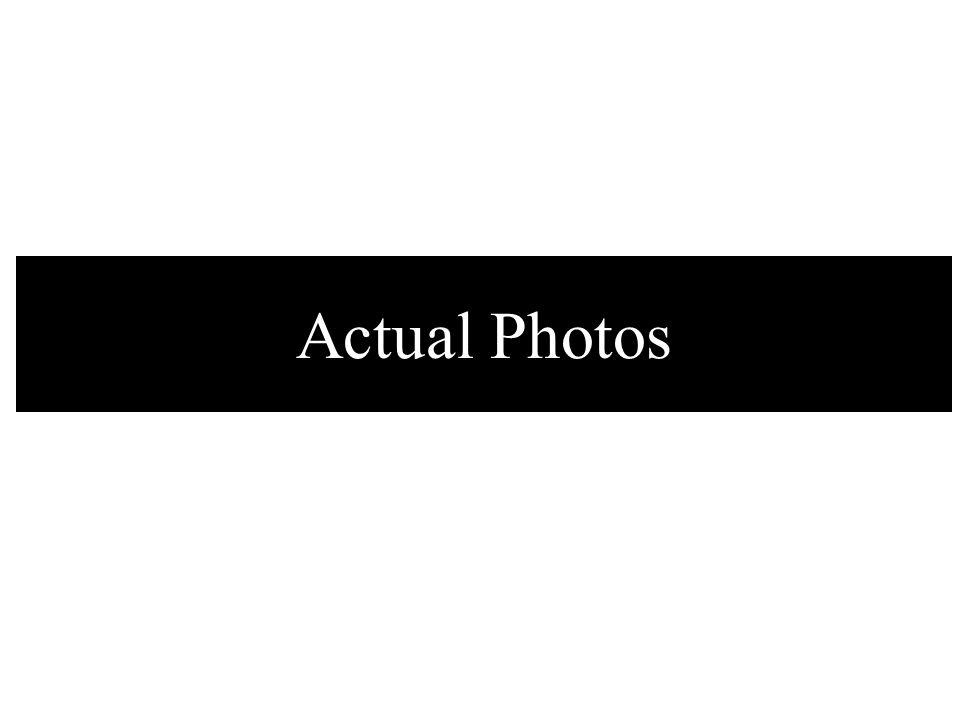 Actual Photos