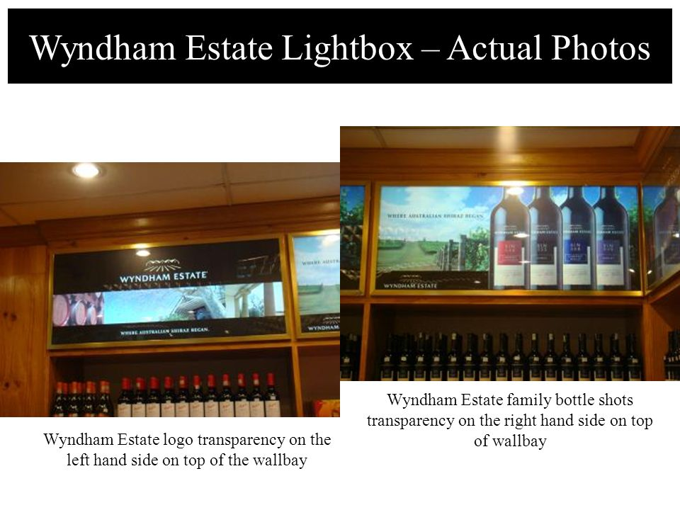 Wyndham Estate Lightbox – Actual Photos Wyndham Estate logo transparency on the left hand side on top of the wallbay Wyndham Estate family bottle shot