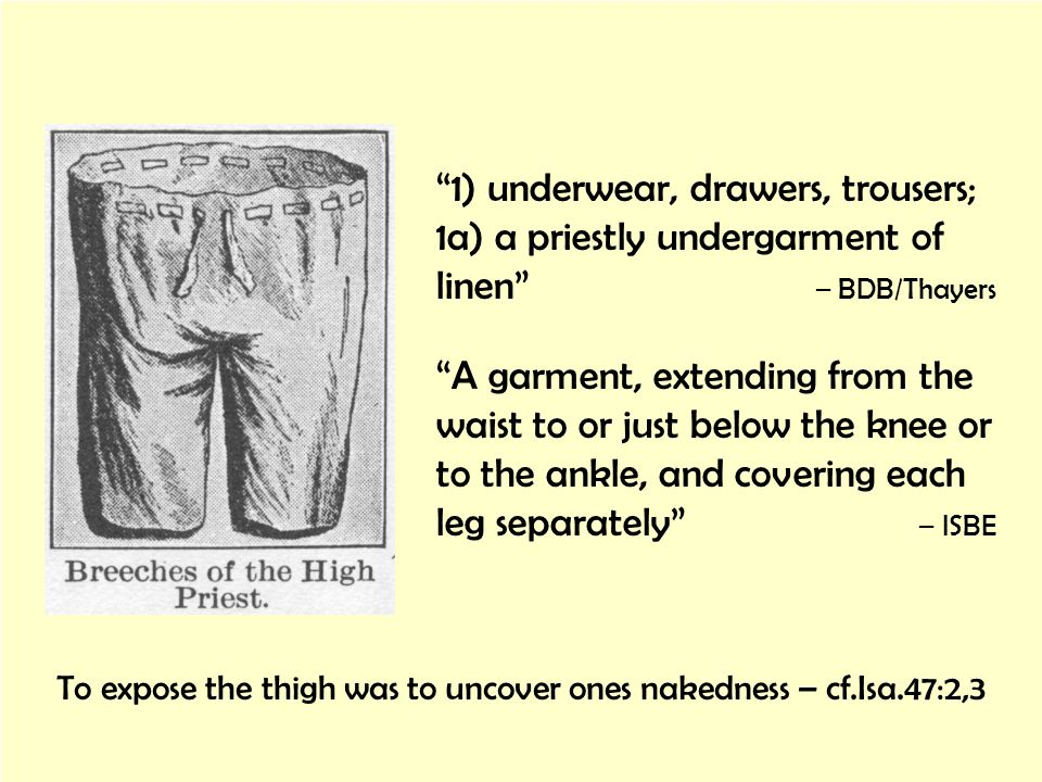 1) underwear, drawers, trousers; 1a) a priestly undergarment of linen – BDB/Thayers A garment, extending from the waist to or just below the knee or t