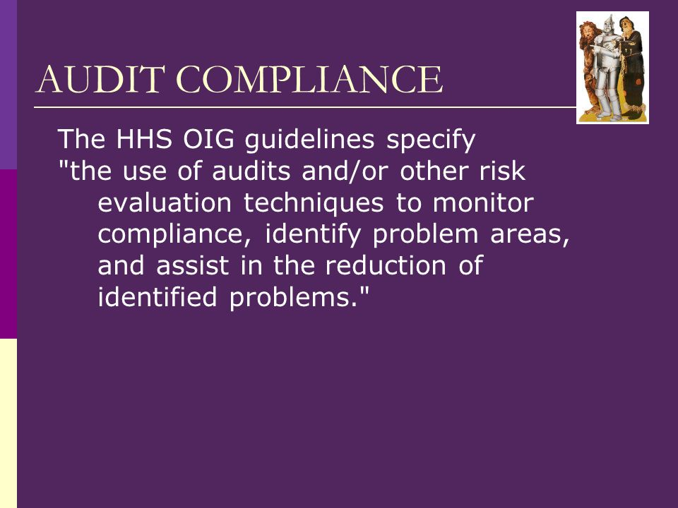 AUDIT COMPLIANCE The HHS OIG guidelines specify the use of audits and/or other risk evaluation techniques to monitor compliance, identify problem areas, and assist in the reduction of identified problems.