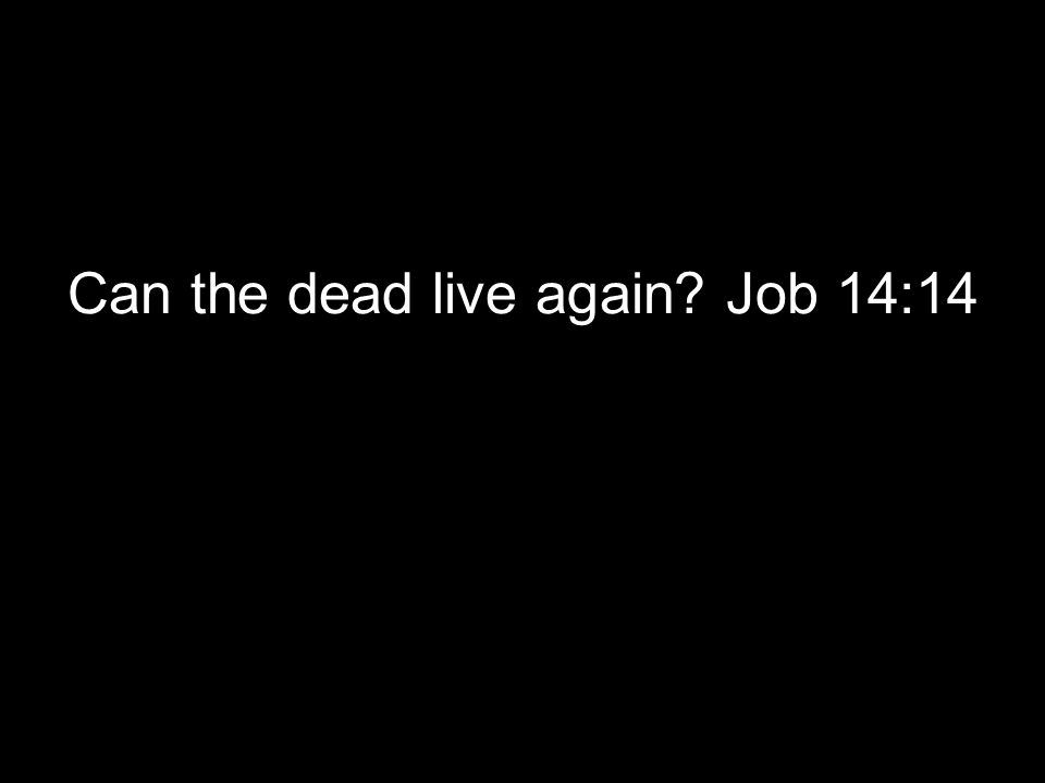 Can the dead live again? Job 14:14