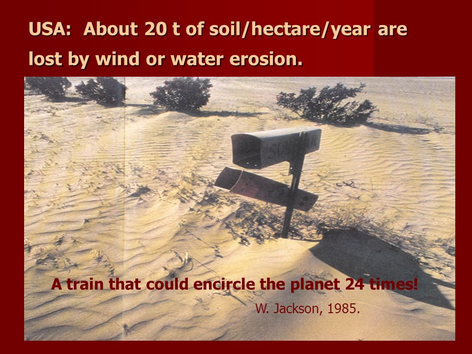 USA: About 20 t of soil/hectare/year are lost by wind or water erosion. A train that could encircle the planet 24 times! W. Jackson, 1985.