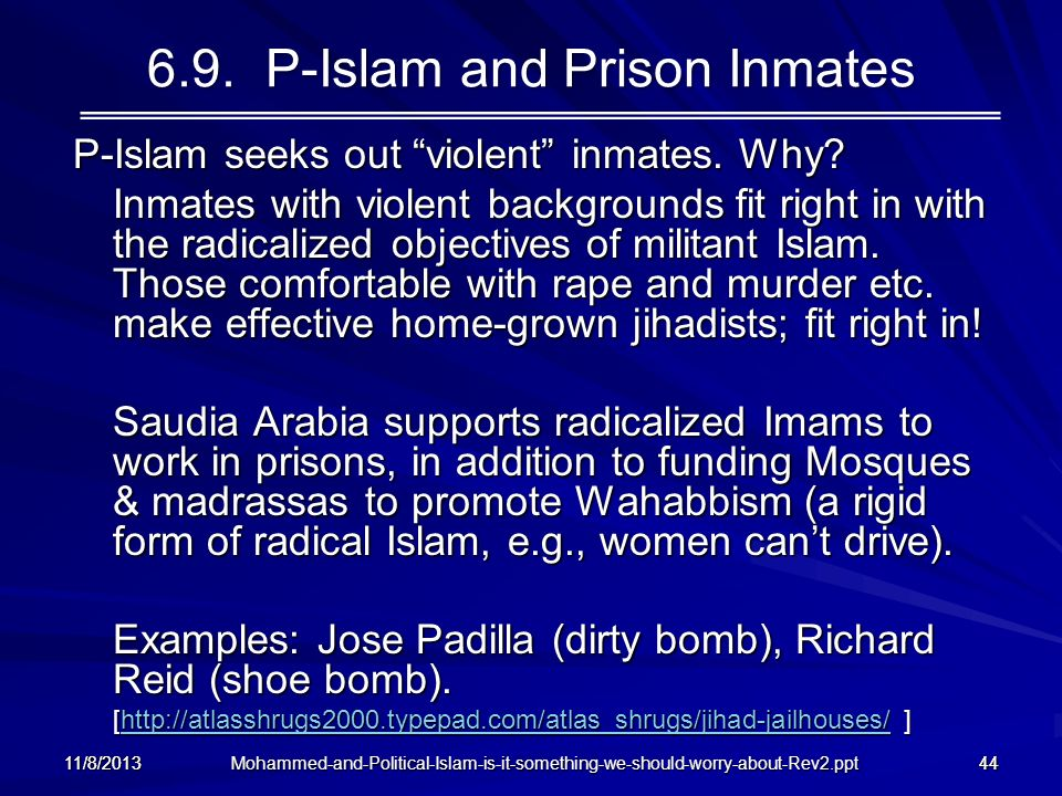 Mohammed-and-Political-Islam-is-it-something-we-should-worry-about-Rev2.ppt 11/8/201344 6.9. P-Islam and Prison Inmates P-Islam seeks out violent inma